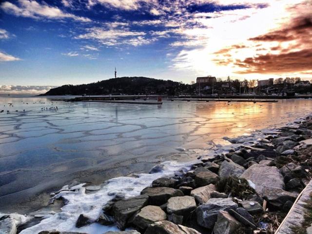 Odderøya i vinterlys.
