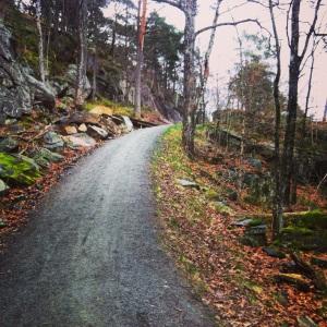 Trollskogen, Justneshalvøya.