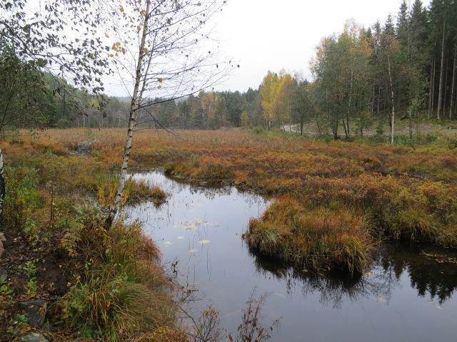 Mellom Jegersberg og Kvarstein.